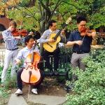 string-quartet-playing